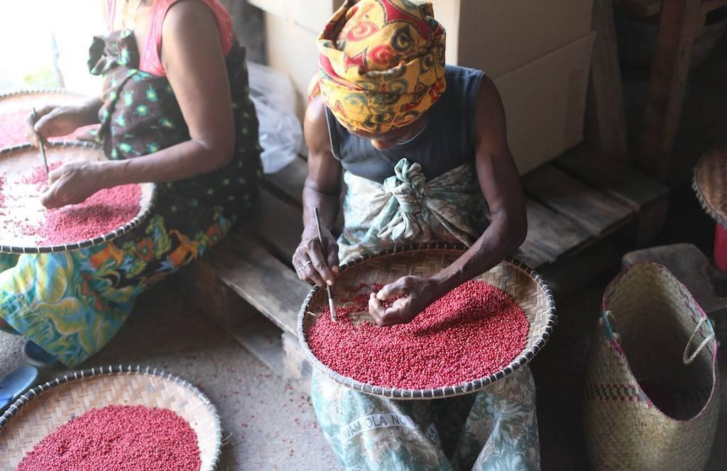 Biopartenaire femme agricultrice poivre rose commerce équitable bio
