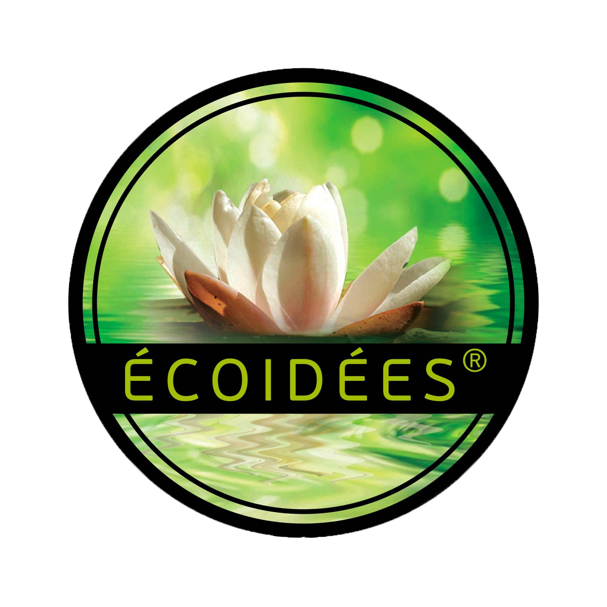 Logo Ecoidées