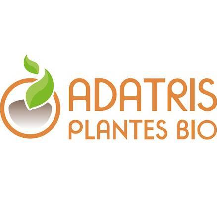 Adatris